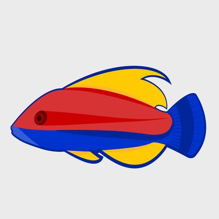 seawater: Icon reef fish.