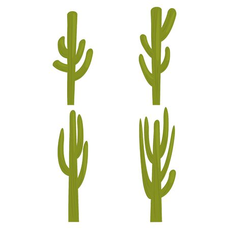 Set of cactus color icons for web and mobile design. Flat vector illustration isolate on a white background.