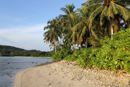 sumatra: Tropical island deserted coastline