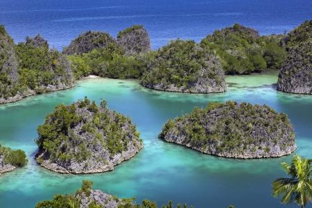 Raja Ampat islands tropical paradise ocean