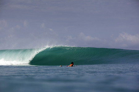 breaking: Green tropical surfing wave and paddling surfer