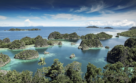 Jungle covered islets in the Raja Ampat islands, West Papua, Indonesia