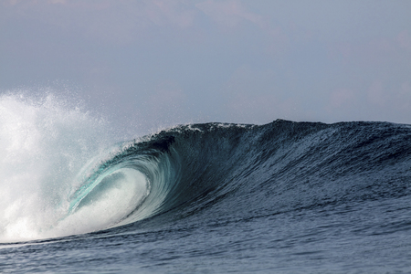 Blue tropical surfing wave breaking over coral reef