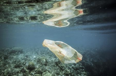 Plastic bag floating over coral reef underwater
