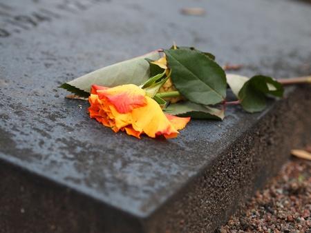 dead flowers: Flowers on a Grave