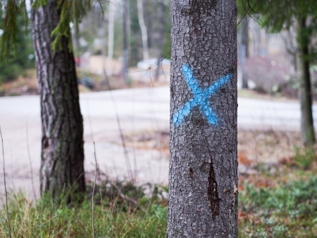 marked: Marked Tree for Logging