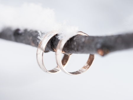winter wedding: Wedding rings on a branch in winter