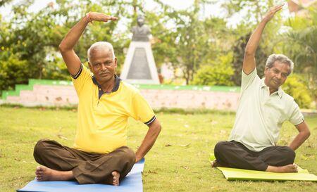 Anziani felici che fanno yoga allungando le mani - Concetto di fitness per persone anziane e stile di vita sano - due anziani impegnati nell'esercizio mattutino