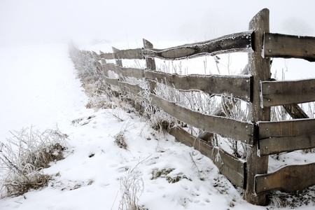 hoary: Rural winter scene with hoary fence