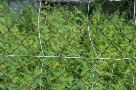 Rusty fence in front of overgrown garden Stock Photo