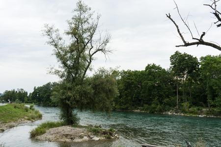 single tree standing in the river Banco de Imagens