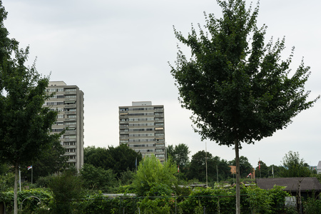 suburban area with green trees Stock Photo