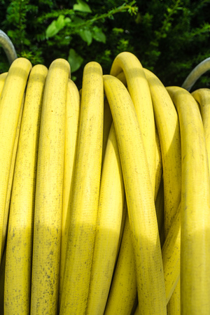 yellow water tube in garden with tree in back Stock Photo