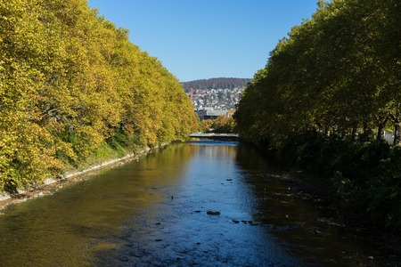 Yellow tree line with river and bridge in autumn Stock Photo