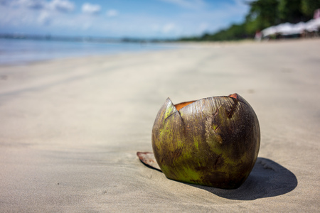 Coconut on sand beach with ocean background 写真素材
