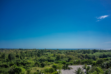 Green forest nature view with ocean and blue sky Foto de archivo