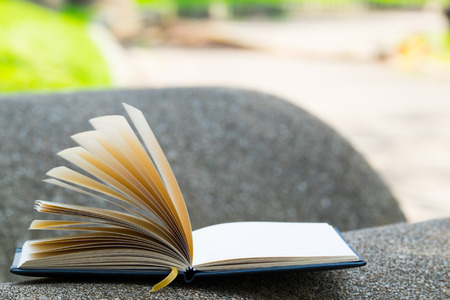 philosophy of logic: book was blow by wind in the garden Stock Photo