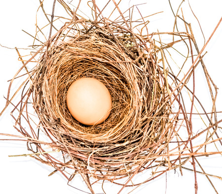 population growth: Egg in a nest white background Stock Photo