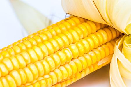 corn yellow: Ma�z amarillo de cerca Foto de archivo