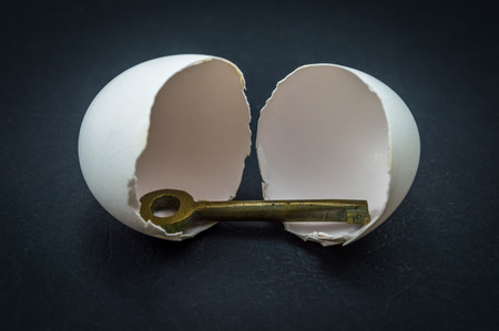 Egg and Key on a black background