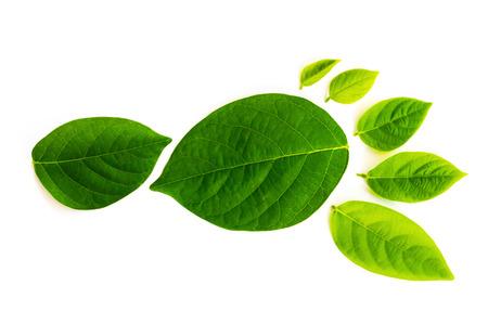 L'impronta di carbonio è una misura dell'impatto nostre attività hanno sull'ambiente, e in particolare il cambiamento climatico. L'impronta è composta da foglie altamente dettagliati differnt serveral. Archivio Fotografico - 45520908