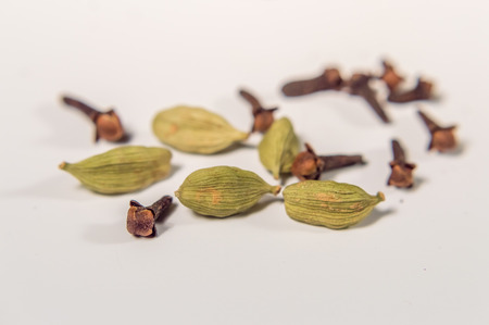 allspice: cardamom an cloves close up on a white background