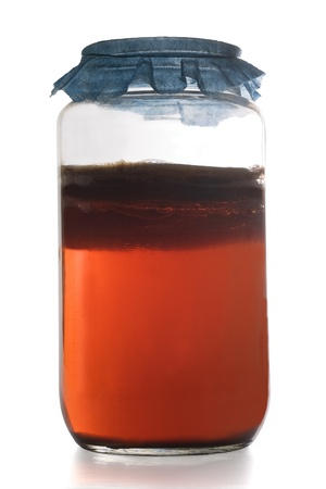 containing: Glass jar containing Kombucha Tea