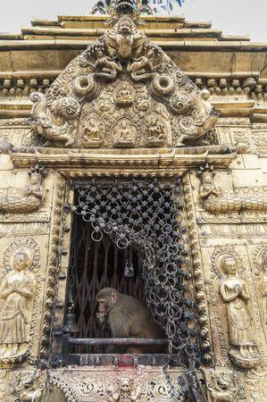 Sacred monkeys in a Stupa at Swayambhunath Monkey temple - Kathmandu, Nepal Zdjęcie Seryjne
