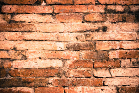 ancient brick wall: ancient brick wall