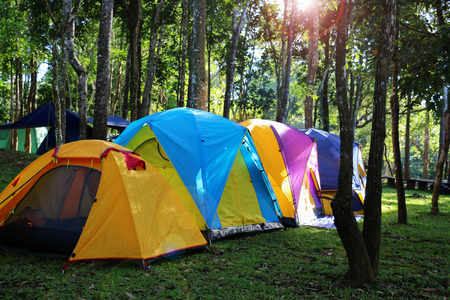 colorful tents in forest for camping in morning with fake lens flare Stock Photo