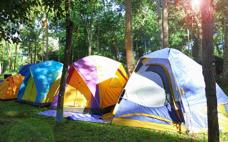 colorful tents in forest for camping in the morning with fake lens flare Stock Photo