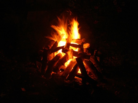 burns night: Campfire at the night time