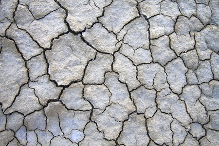 Close up of dry cracked ground great for background. photo
