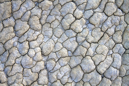 Close up of dry cracked land great for background. photo