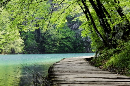 plitvice: Wooden path near a forest lake. Shot at Plitvice Lakes National Park, Croatia. Stock Photo