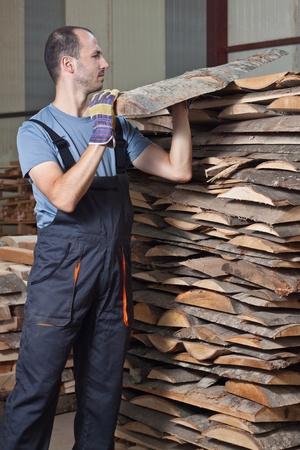 woodworker: Man arraging beech planks in a warehouse. Vertical shot.