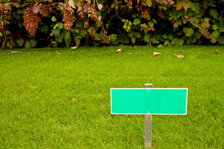Green grass with a sign and a bush, horizontal shot with copy space photo