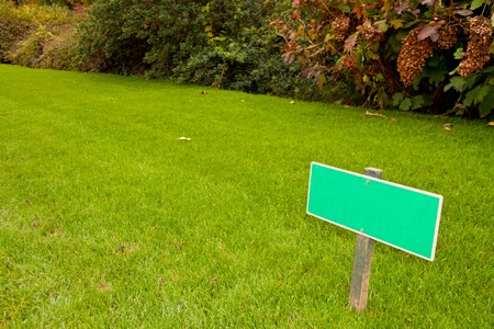 Green grass with a sign and a bush, sideview horizontal shot with copy space photo