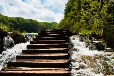 Wet wooden stairs with whitewater and forest