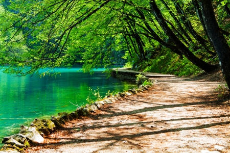Path near a forest lake in Plitvice Lakes National Park, Croatia Standard-Bild
