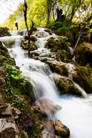 Whitewater running in the forest  Plitvice Lakes National Park, Croatia photo