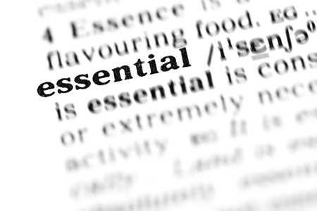 essential (the dictionary project, macro shots, shallow D.O.F.) photo