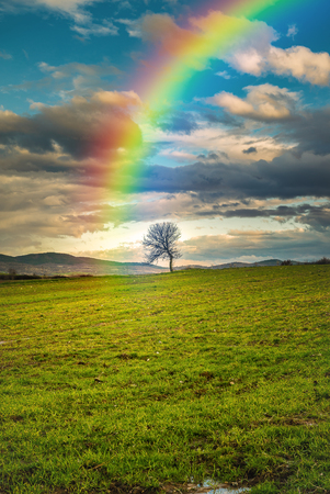 Rainbow in the sky pointing a lonely tree after the storm is gone... Maybe the treasure is hidden there... Stock Photo