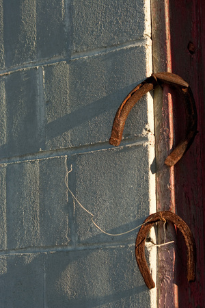 Abandoned workshop with rusty horseshoes hanging on door with nails.