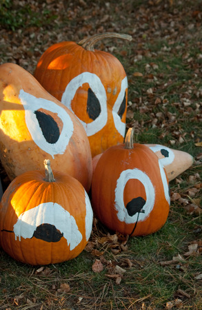 Decorated pumpkins for fall harvest or Halloween Banque d'images