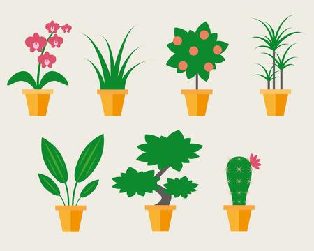 houseplants: Flat style Houseplants - vector illustration, may use like icons
