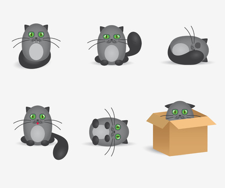 geen: Vector cats flat icons set. Cute gray cats with geen eyes.