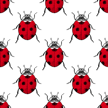 ladybug: Ladybugs seamless pattern. Vintage hand drawn insects. Illustration