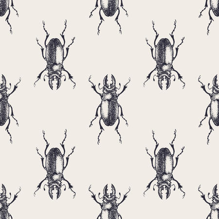 beetles: Beetles seamless pattern. Vintage hand drawn insects.