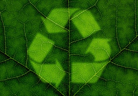 Recycle symbol over green leaf texture photo